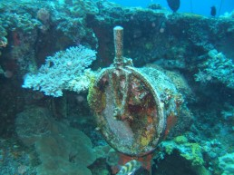 Chuuk Lagoon - Stunning Pacific Wreck for Diving