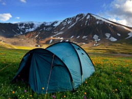 Glamping - A Curation of Divine Destination