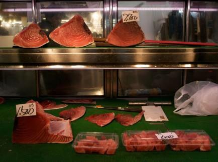 Tokyo-Fish-Market-Bustling-Human-Theater