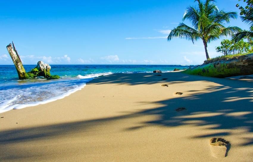 visit-Costa-Rica-Rare-Experiences