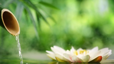 Thailand – Indulge in a Traditional Thai Massage