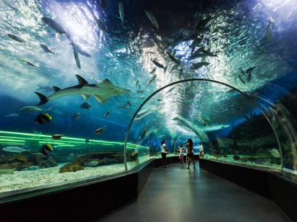Top-5-World-Zoos