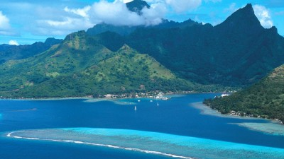 Bora Bora Activities: Snorkeling and Hibiscus