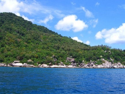 diving Koh Tao Thailand 11