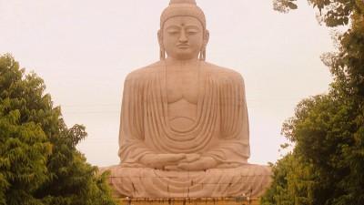 Bodhi Tree at Bodhgaya