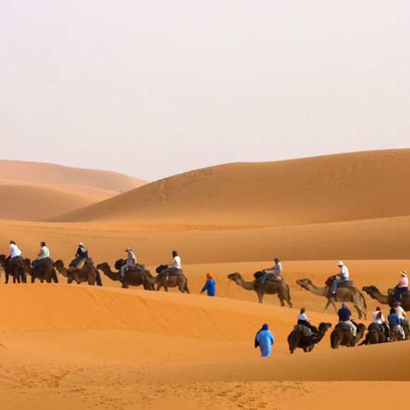 Camel Trek Across the Sahara Desert