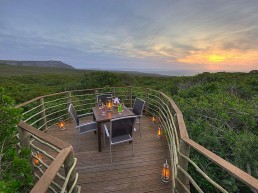 Grootbos Private Nature Reserve South Africa 1.1