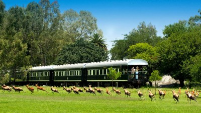 The Pride of Africa Train: Rovos Rails