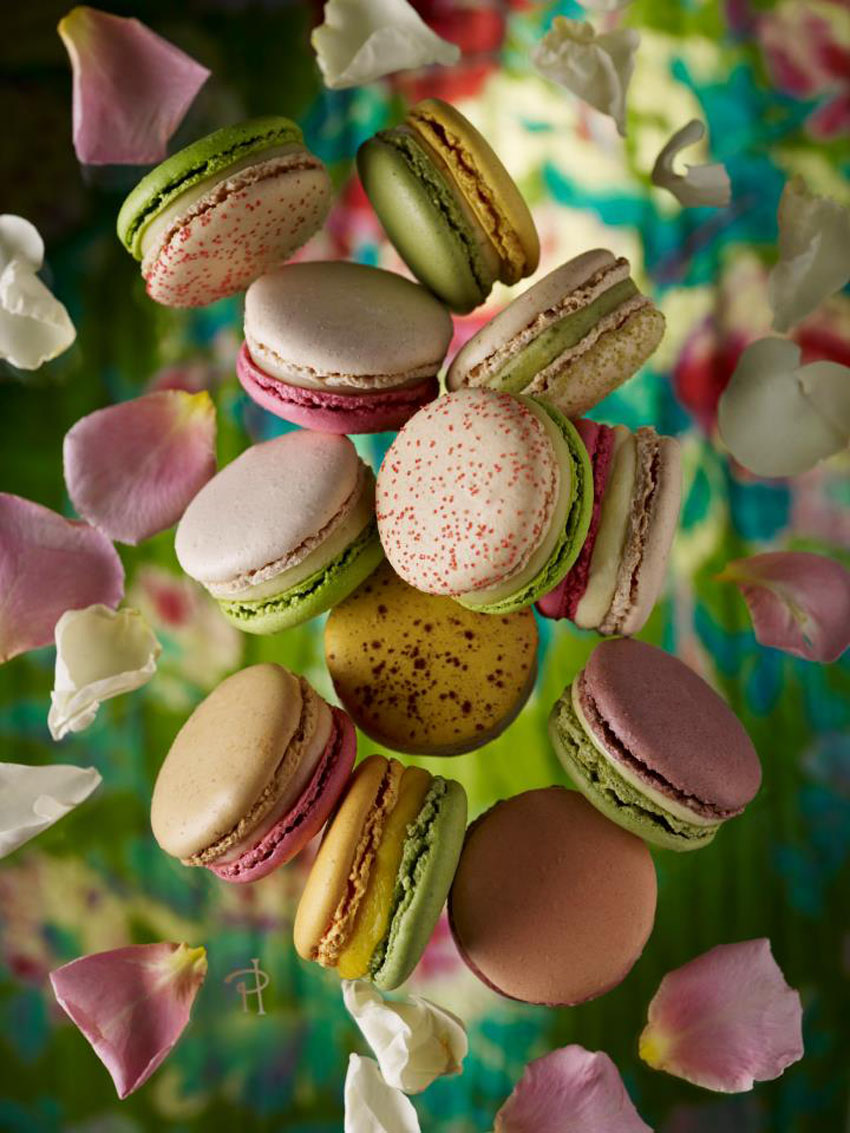 best macarons in paris pierre herm luxeinacity. Black Bedroom Furniture Sets. Home Design Ideas