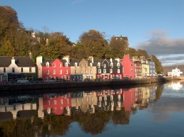 Isle of Mull Tobermory Watching Whales in Scenic Scotland